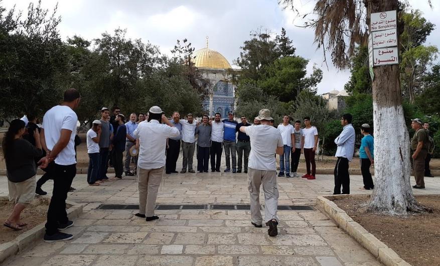 29 ألف متطرف اقتحموا المسجد الأقصى المبارك خلال عام 2018