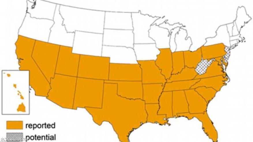 مرض خطير يصيب 300 ألف أميركي .. والأطباء يحذرون الملايين