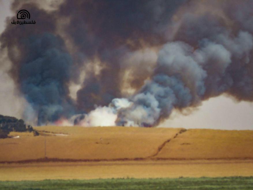 غلاف غزة يشتعل.. اندلاع النيران في مئات الدونمات بفعل بالونات حارقة