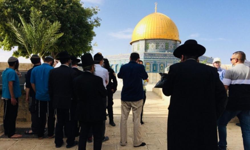 أبو حلبية: اقتحامات المستوطنين للأقصى عدوان يهدف لفرض الهيمنة الإسرائيلية