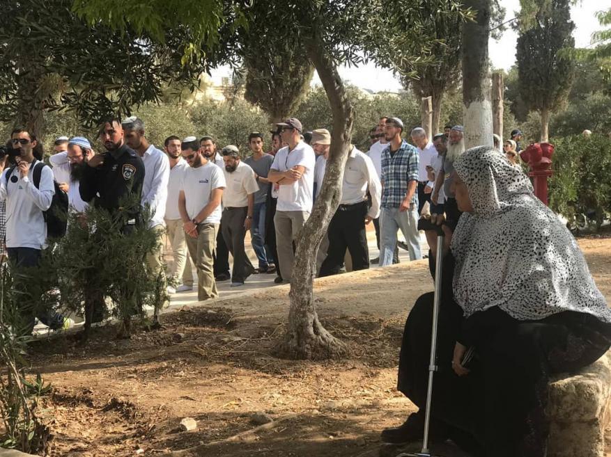 200Israeli settlers defile al-Aqsa Mosque