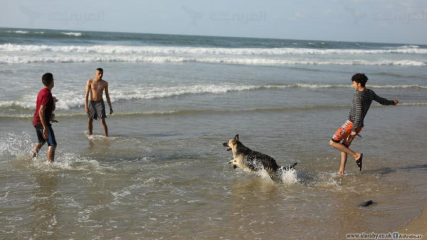 غزة: الشرطة البحرية تصدر قراراً بشأن الدراجات النارية والحيوانات للشاطئ