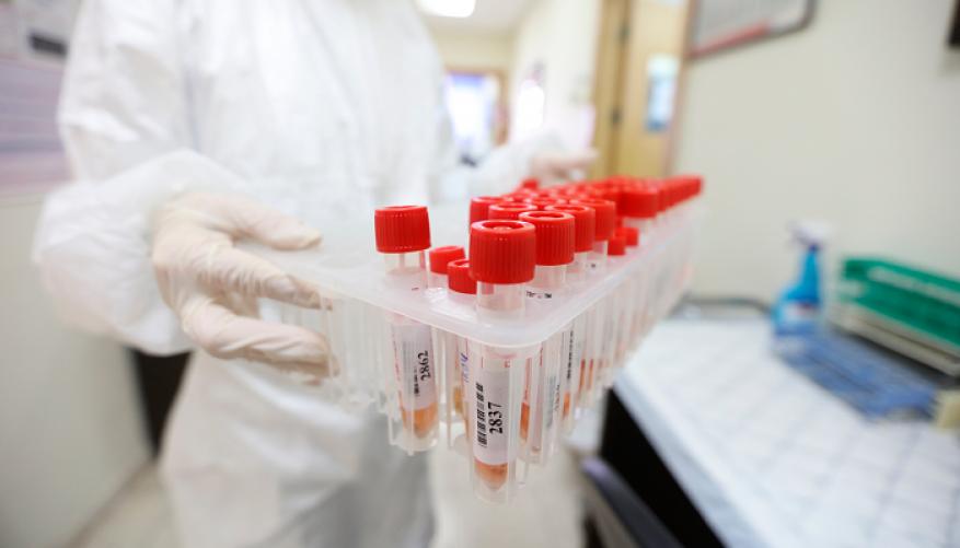 غزة.. تسجيل 368 إصابة جديدة بفيروس كورنا