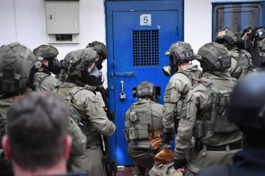 """قوات القمع تقتحم غرف الأسرى في """"عسقلان"""" و تُنكل بالأسرى"""
