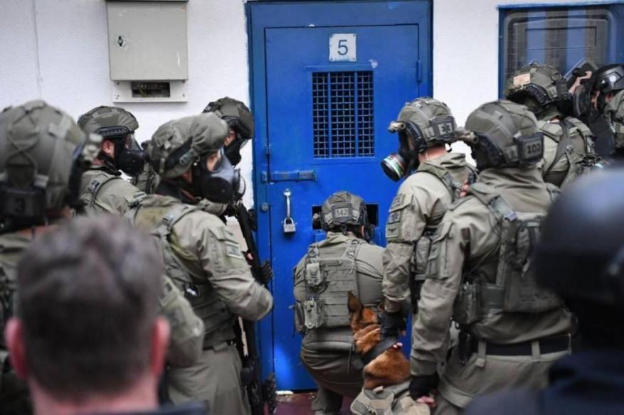 """""""التحالف الأوروبي"""" يُناشد العالم بالتدخل لإنقاذ حياة الأسرى الفلسطينيين"""