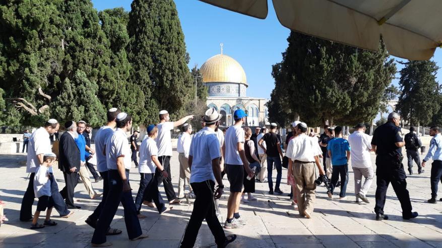 """مستوطنون يقتحمون المسجد الأقصى ويؤدون صلوات تلمودية في """"باب الرحمة"""""""