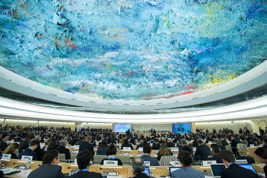 منظمات تخاطب مجلس حقوق الإنسان حول انتهاك السلطة الجسيم بحجب المواقع