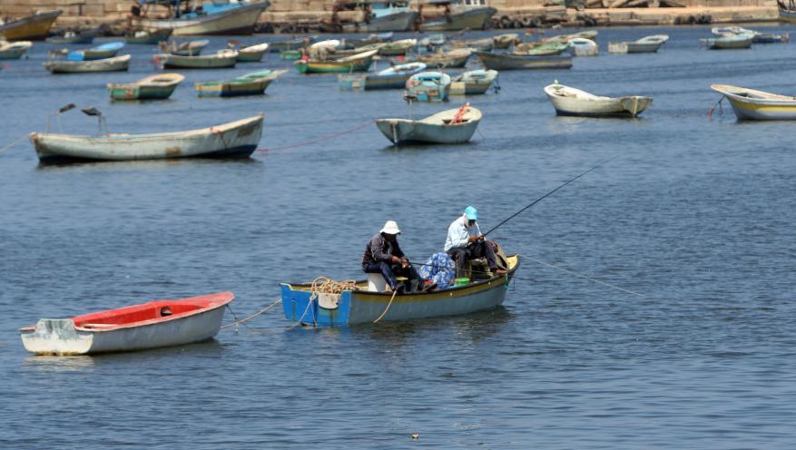 صيادو غزة يعلقون العمل داخل البحر احتجاجاً على استشهاد صياد برصاص مصري