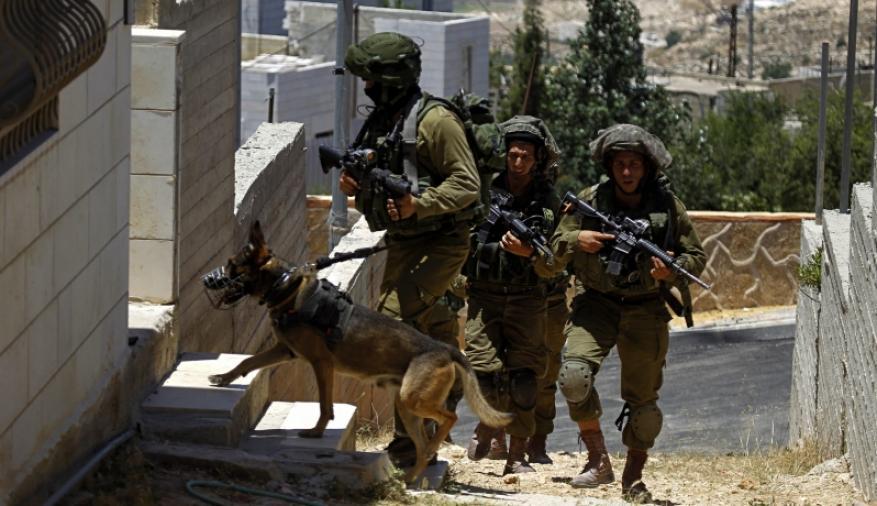 قوات الاحتلال تداهم بلدة جيت شرق قلقيلية