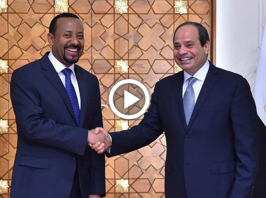 شاهد: السيسي يطالب رئيس وزراء أثيوبيا بالقسم على حماية حقوق مصر المائية