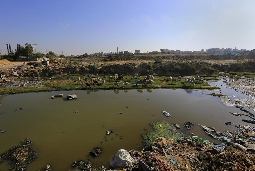 المستوطنون يصرخون نهر عادم يتدفق علينا من غزة