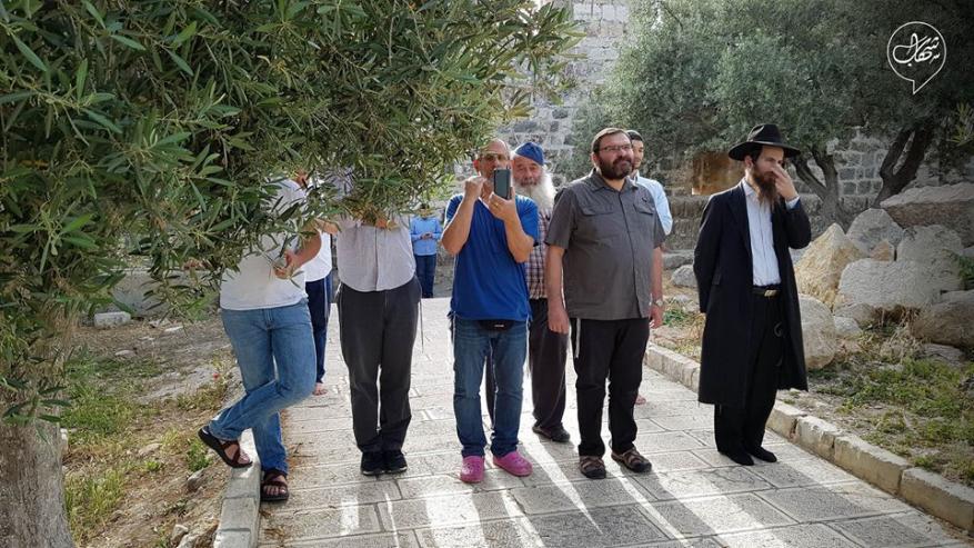 عشرات المستوطنين يقتحمون المسجد الأقصى بحراسة أمنية مشددة