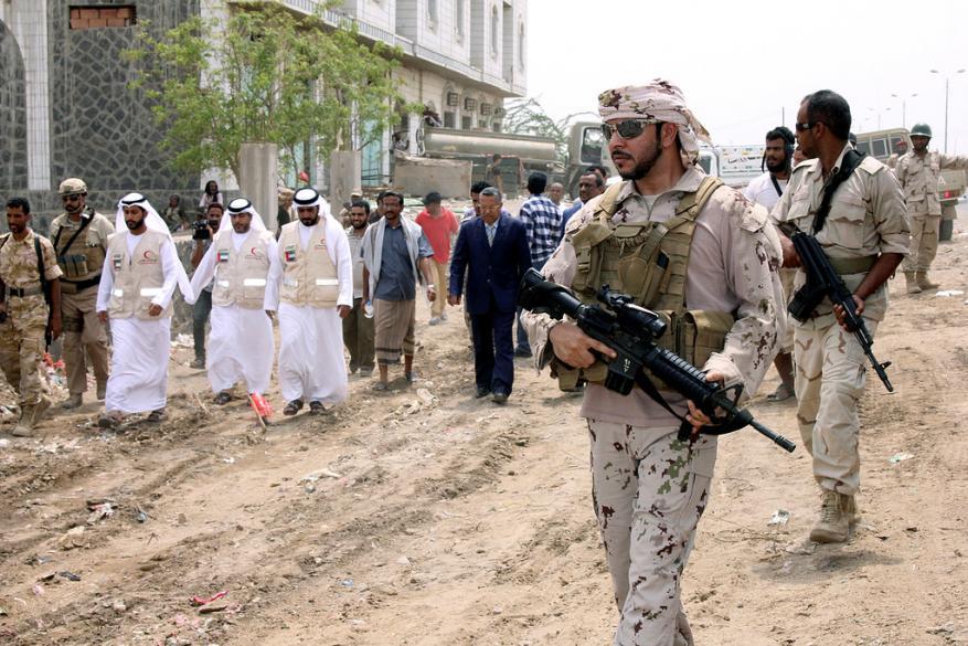 وزير إماراتي يلمح لإصابة نجل شقيق رئيس الإمارات في تحطم طائرة باليمن