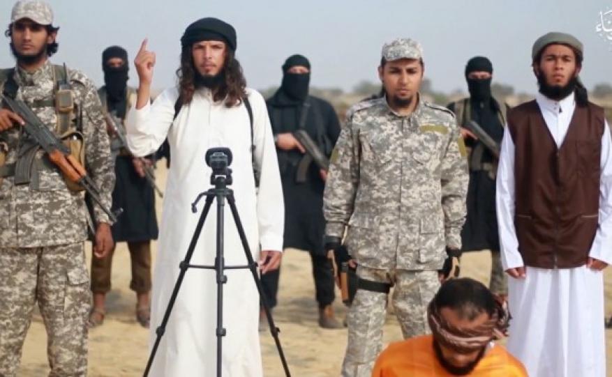 صحيفة عبرية: حرب داعش ضد مهربي الأسلحة لحماس تخدم إسرائيل !