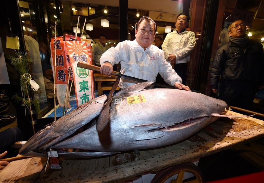 بيع أول وأضخم سمكة تونة باليابان في عام 2018 بـ 320 ألف دولار