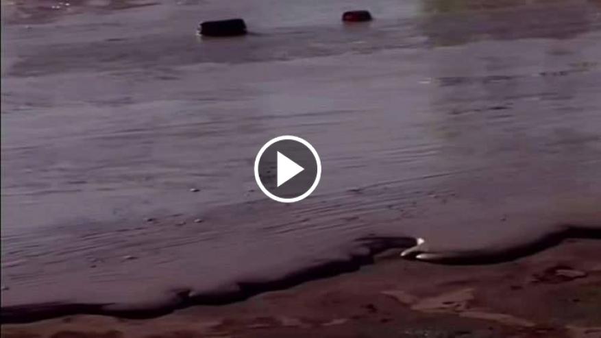 شاهد: شارع في بولندا يتحول إلى نهر من الشوكولاتة!