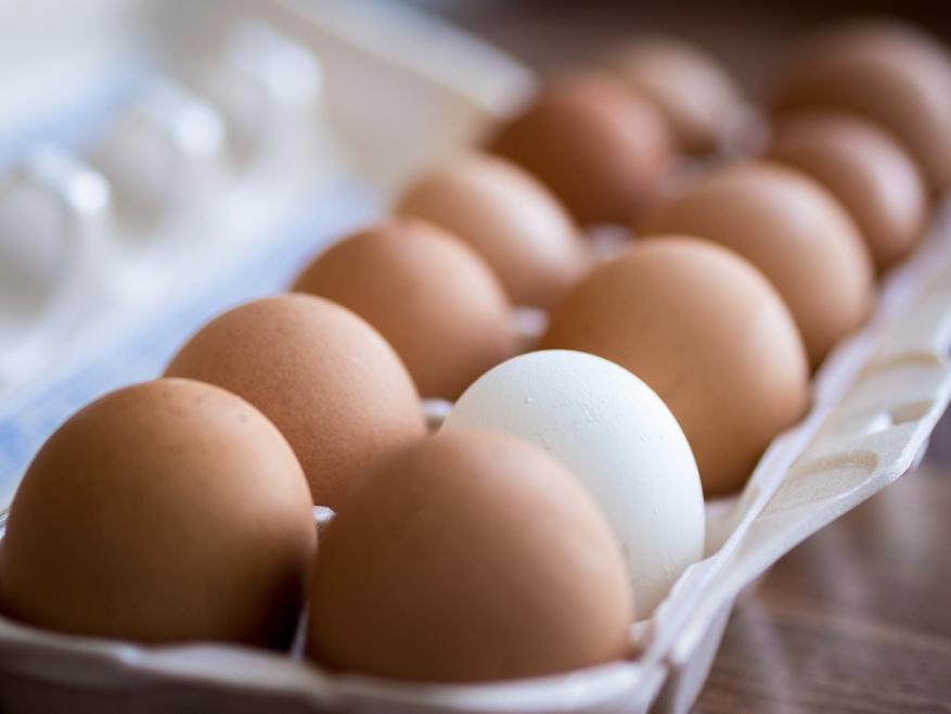 خبراء: الثلاجة أسوء مكان لحفظ البيض