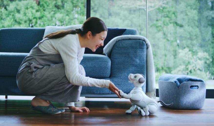 """سوني تعيد إنتاج الكلب الآلي """"أيبو"""" بنسخة أكثر ذكاء"""